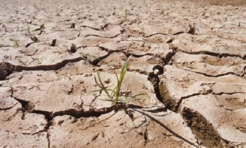 Catastrophe looms as 850,000 go hungry, says UN - Madagascar drought