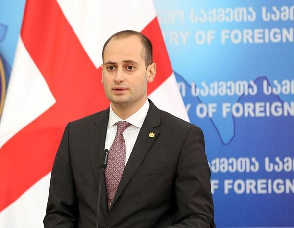 Georgian foreign minister to visit Azerbaijan