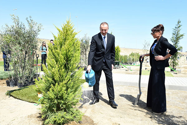 President Ilham Aliyev attended tree-planting campaign
